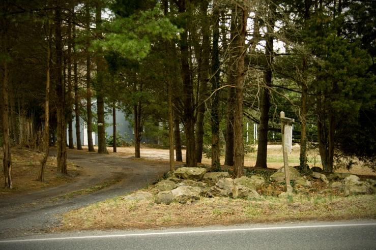 Pinelands Driveway