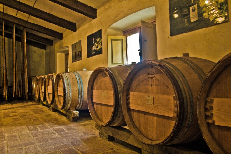 Wine Barrels - Fermentation