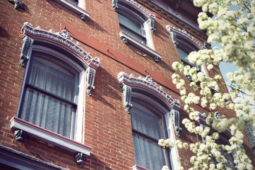 Frilly Windows