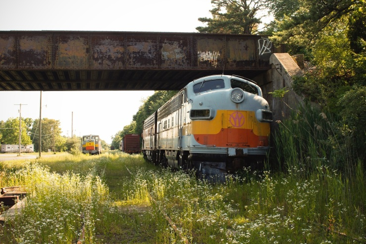 Trains 04web