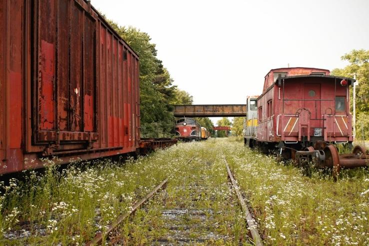 Trains 17web